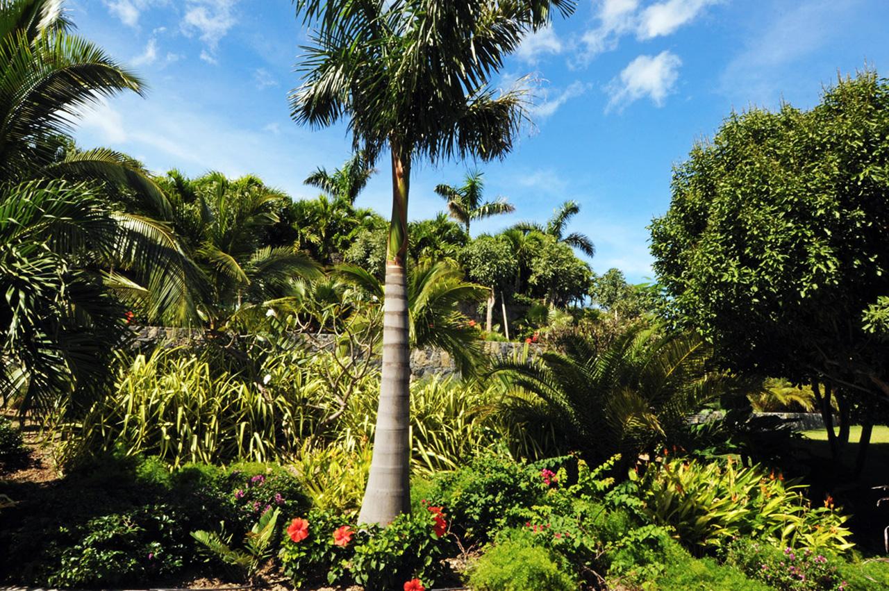 gardens and villa dunes - deviprasadregmi